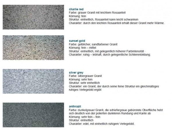 Komplett-Sätze Granit Beckenrandsteine für Ovalformbecken